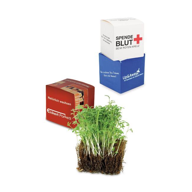 Кокосови кубчета със семена от кресон в индивидуална опаковка